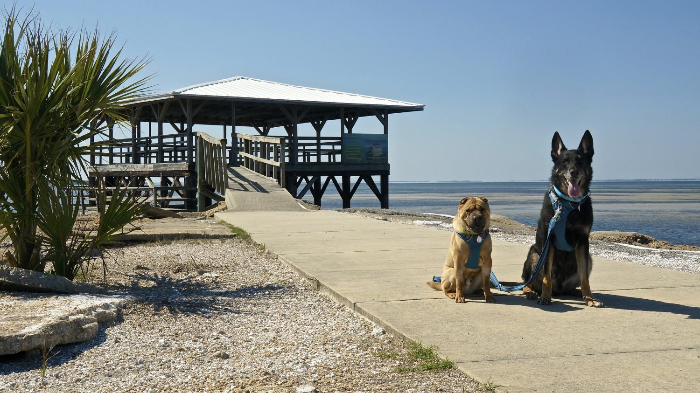 Forgotten Coast - Port St. Joe, FL