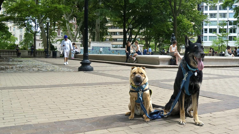 Rittenhouse Square - Philadelphia, PA