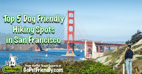Top 5 Dog Friendly Hiking Spots in San Francisco from the Pet Travel Experts at GoPetFriendly.com
