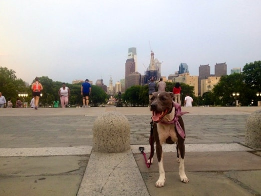 Ruka running Rocky Steps - Philadelphia, PA