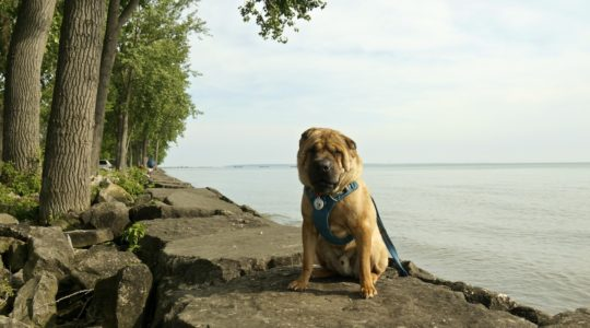 East Harbor State Park - Lakeside, OH