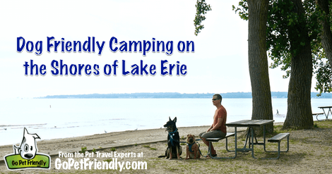 Dog Friendly Camping on the Shore of Lake Erie