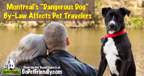 Montreal's Dangerous Dog By-Law Affects Pet Travelers