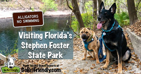 Visiting Florida's Stephen Foster State Park With Dogs