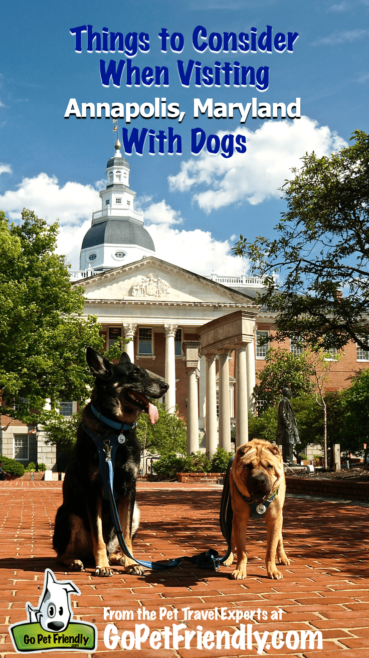 Visiting Annapolis, MD with GoPetFriendly.com