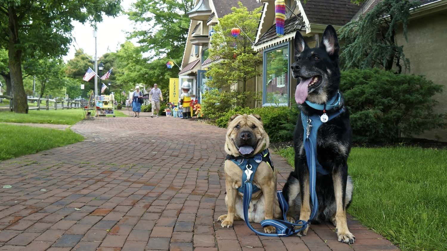 Dog Friendly Peddlers Village in Bucks County, Pennsylvania