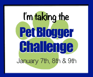 Take the Pet Blogger Challenge Jan 7th, 8th and 9th, 2017