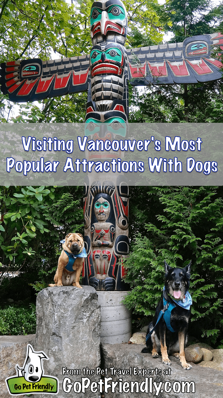 Visiting Vancouver's Famous Attractions With Dogs | GoPetFriendly.com