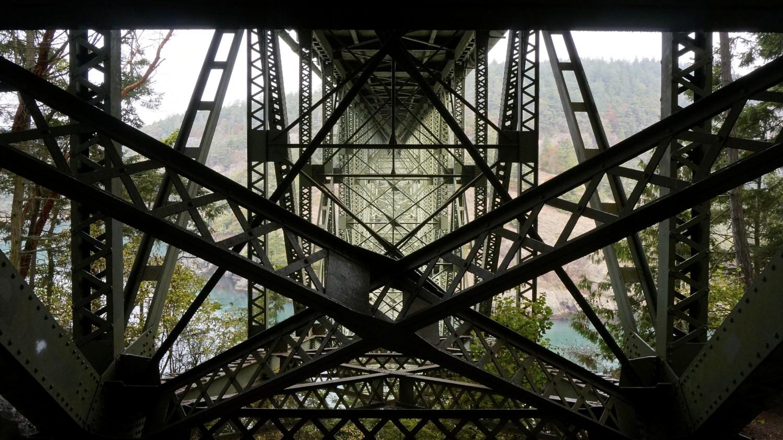 Photo Safari in Anacortes, WA | GoPetFriendly.com