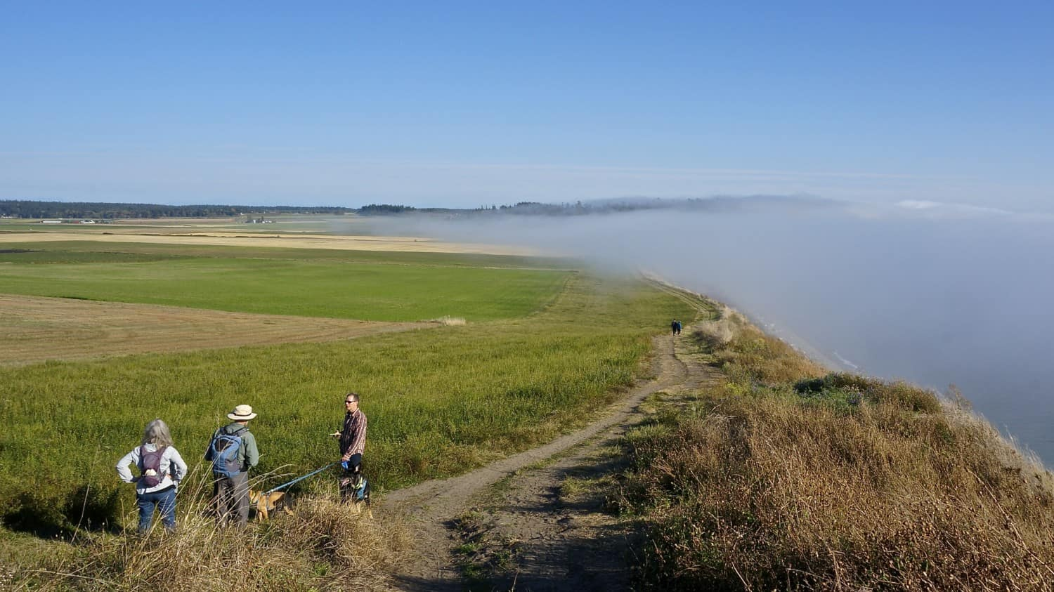 Exploring Fidalgo and Whidbey Island with Dogs | GoPetFriendly.com