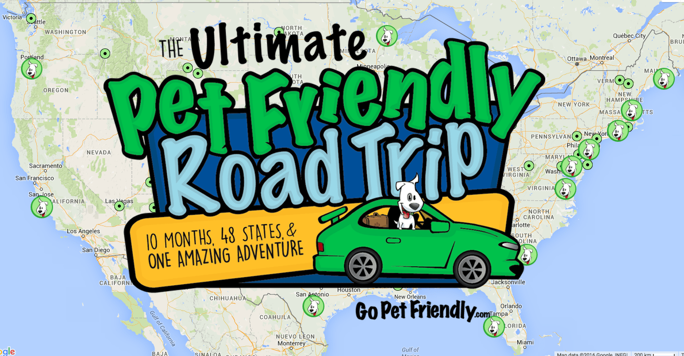 The Ultimate Pet Friendly Road Trip Map and Logo