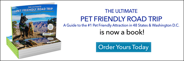Order GoPetFriendly.com's The Ultimate Pet Friendly Road Trip