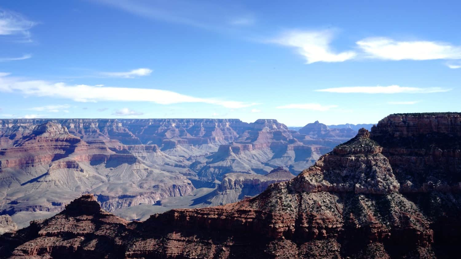 Arizona's Top Pet Friendly Attraction: The Grand Canyon | GoPetFriendly.com