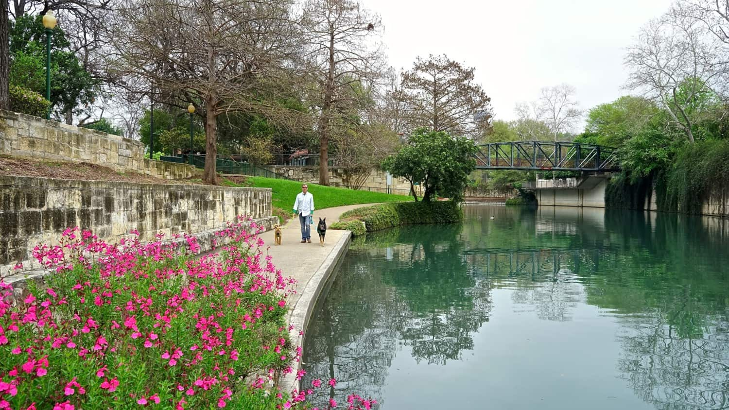 Texas' Top Pet Friendly Attraction: The San Antonio River Walk | GoPetFriendly.com