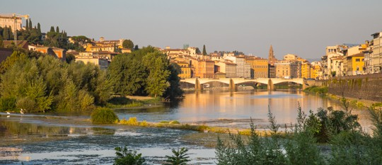 VanDoggo Italy Arno River