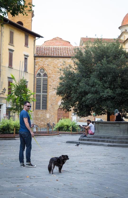 VanDoggo Italy Santo Sprito square