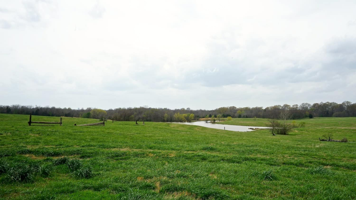 Tennessee's Top Pet Friendly Attraction: Shelby Farms Park | GoPetFriendly.com