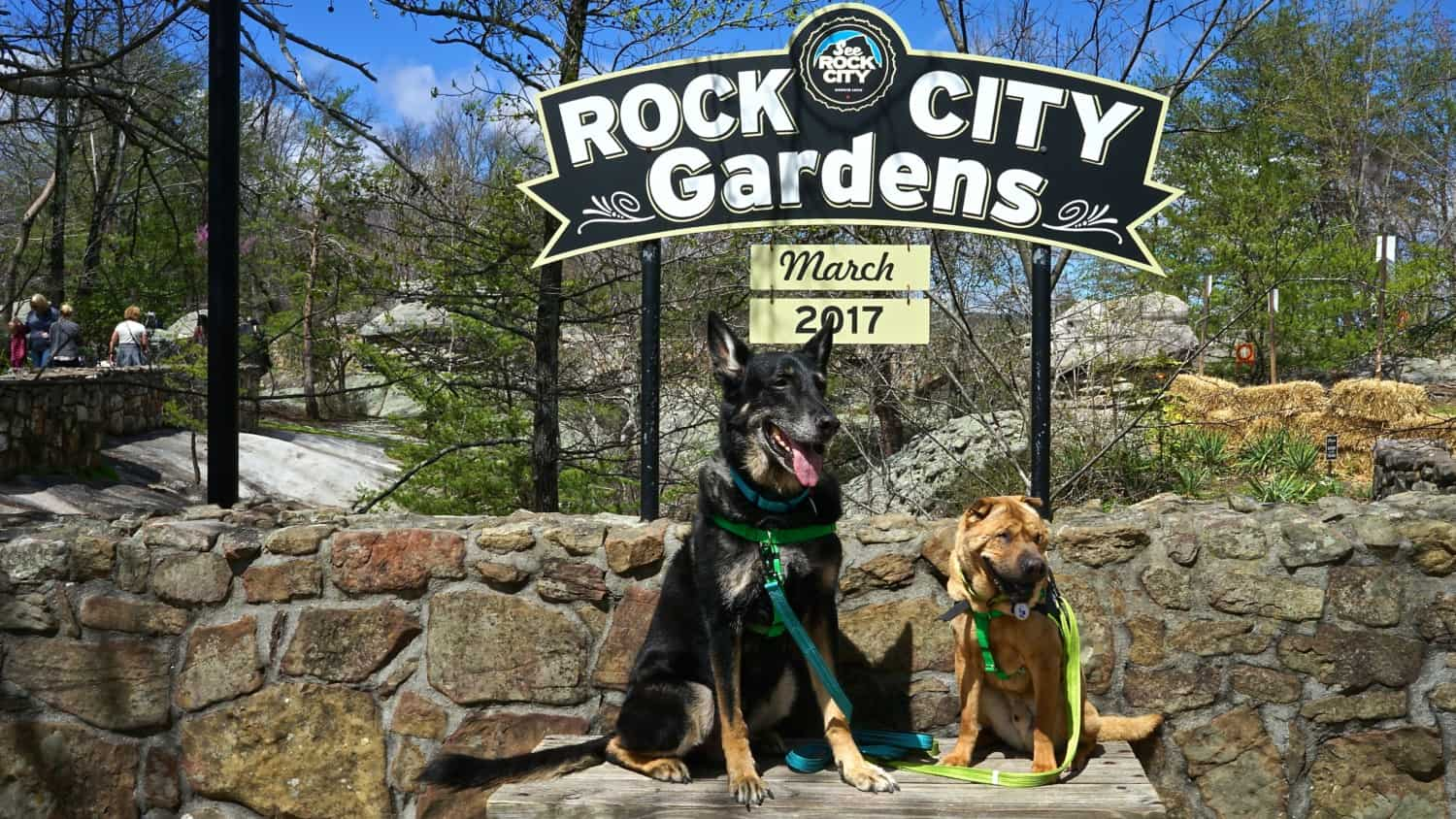 Georgia's Top Pet Friendly Attraction: Rock City Gardens