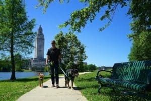 Louisiana's Top Pet Friendly Attraction: State Capitol Grounds