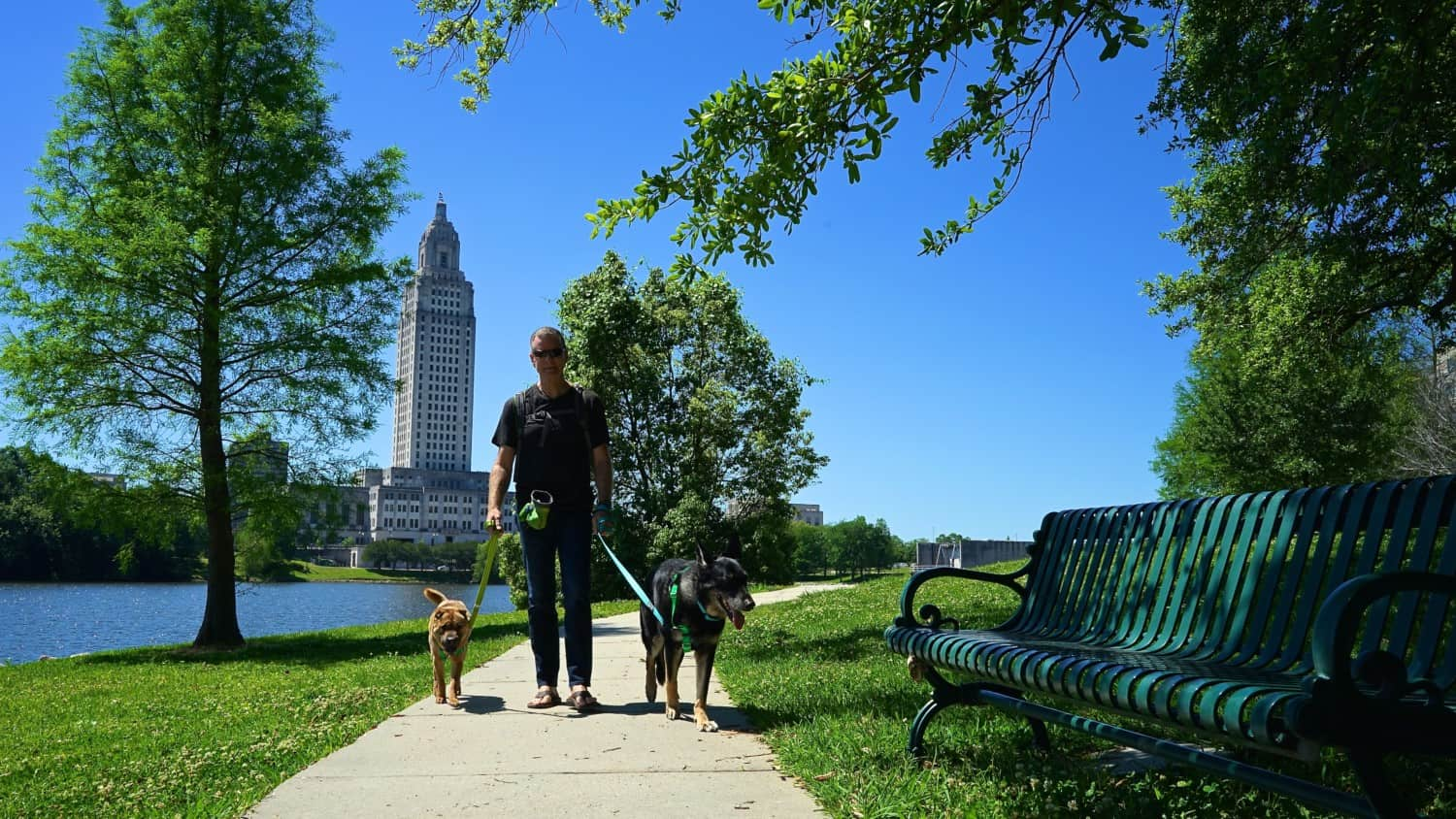 Louisiana's Top Pet Friendly Attraction: The State Capitol Grounds