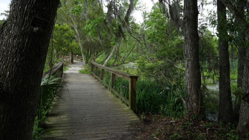 South Carolina's Top Pet Friendly Attraction: Magnolia Plantation & Gardens | GoPetFriendly.com