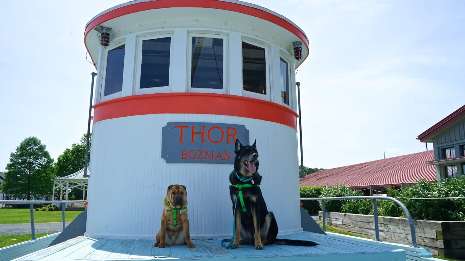Maryland's Top Pet Friendly Attraction: The Chesapeake Bay   GoPetFriendly.com