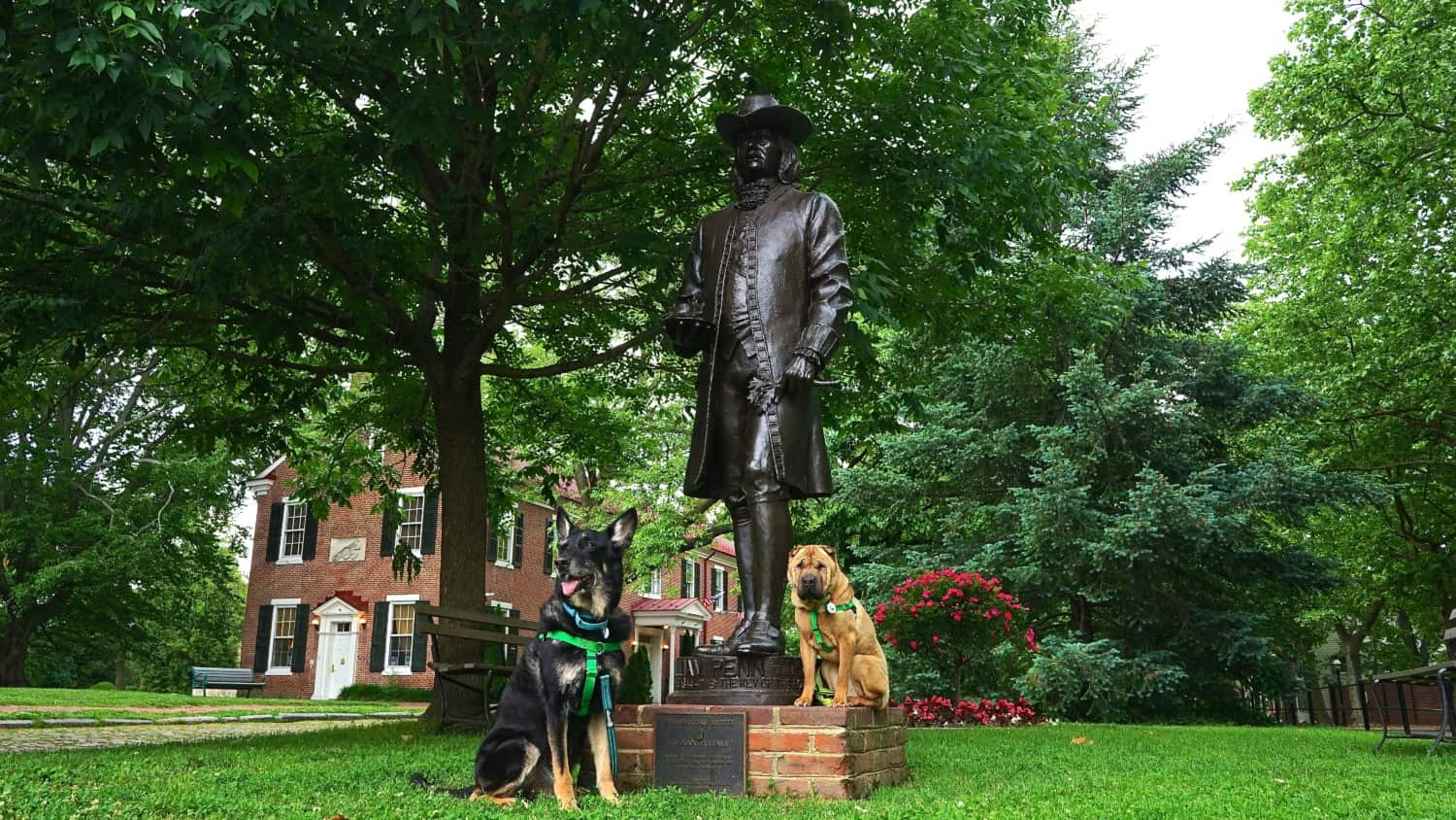 Delaware's Top Pet Friendly Attraction: Historic New Castle