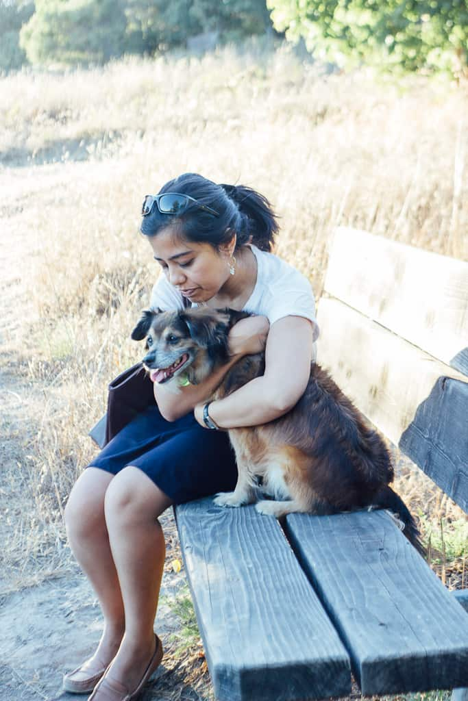 Tips for Enjoying California's Wine Country with Your Dog | GoPetFriendly.com
