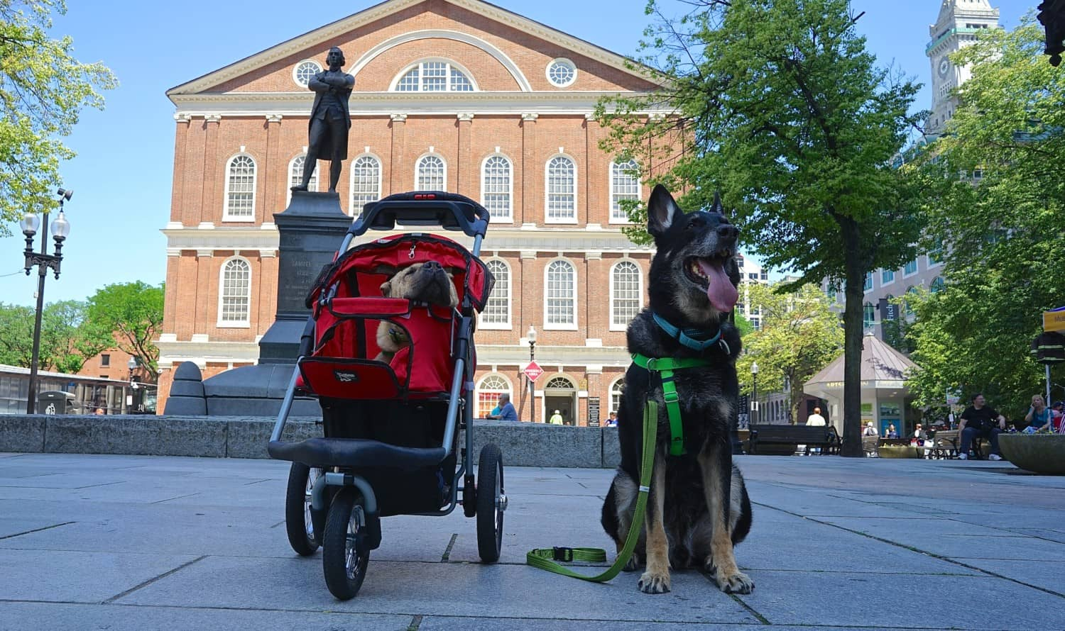 Massachusetts' Top Pet Friendly Attraction: Boston's Freedom Trail | GoPetFriendly.com