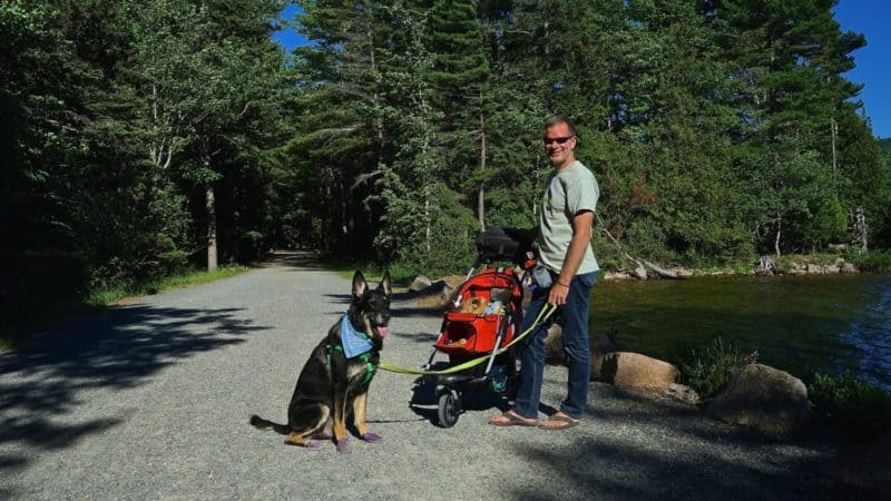 Maine's Top Pet Friendly Attraction: Acadia National Park | GoPetFriendly.com