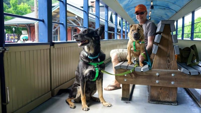 Pennsylvania's Top Pet Friendly Attraction: Lehigh Gorge Scenic Railway | GoPetFriendly.com