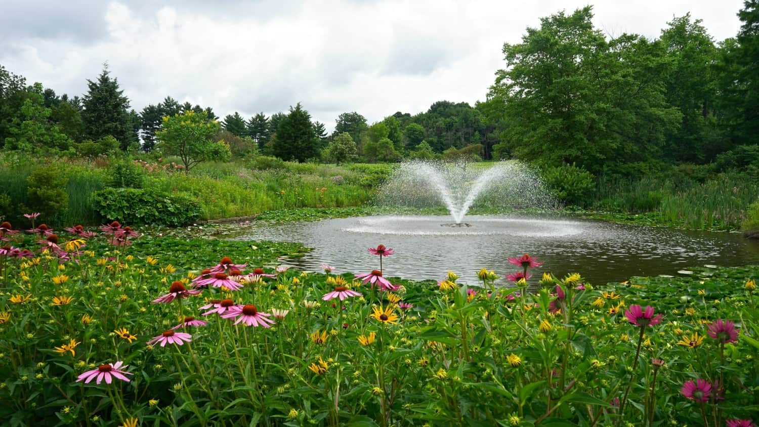 Ohio's Top Pet Friendly Attraction: Holden Arboretum | GoPetFriendly.com