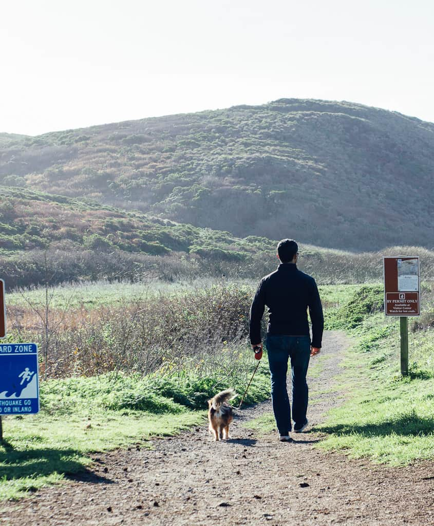 California's Dog Friendly Beaches - From the Redwoods to Santa Barbara | GoPetFriendly.com