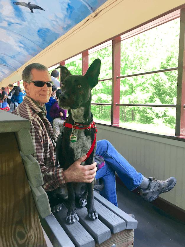 Brindle dog sitting beside man on the pet friendly Lehigh Gorge Scenic Railway in Jim Thorpe, PA