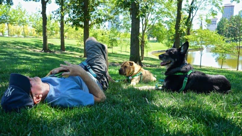 Missouri's Top Pet Friendly Attraction: Gateway Arch Park | GoPetFriendly.com
