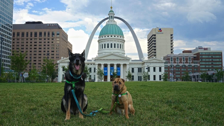 Missouri's Top Pet Friendly Attraction: Gateway Arch Park