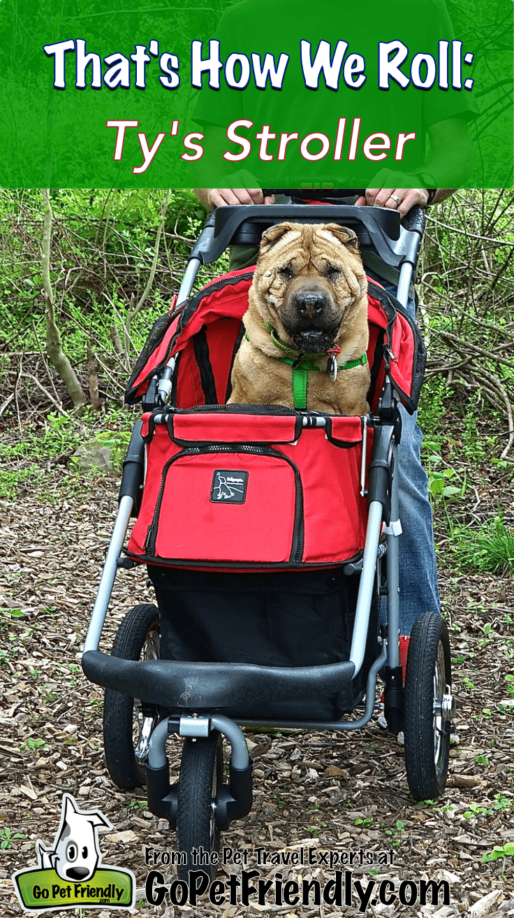 That's How We Roll: Dog Stroller | GoPetFriendly.com