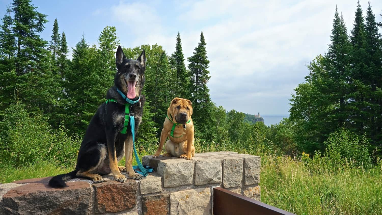 Minnesota's Top Pet Friendly Attraction: Split Rock Lighthouse State Park