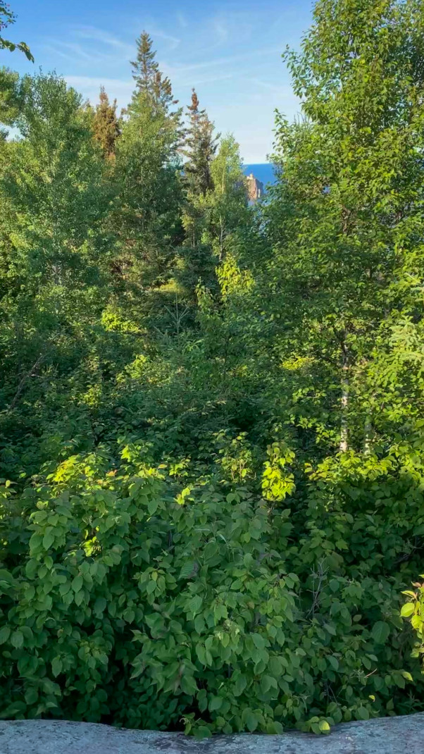 Green trees with a gap between some that is barely low enough to see Split Rock Lighthouse and Lake Superior far off in the distance