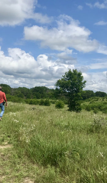 Man and dog walking pet friendly trail at Trempealeau National Wildlife Refuge in Wisconsin
