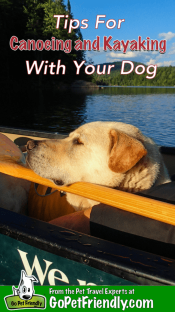 Tips for Canoeing and Kayaking with Dogs | GoPetFriendly.com