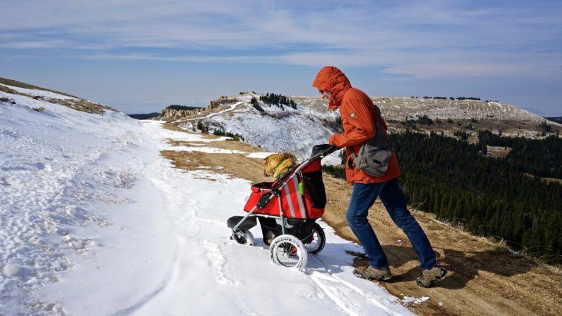 Wyoming's Top Pet Friendly Attraction: Medicine Wheel | GoPetFriendly.com