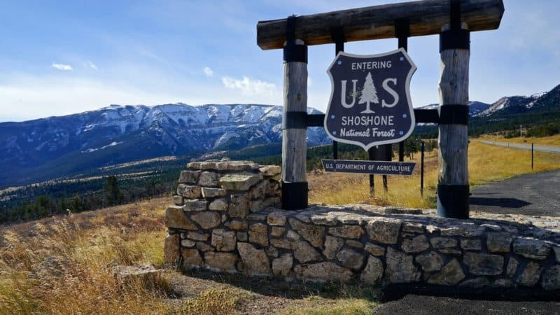 Montana's Top Pet Friendly Attraction: Beartooth Highway | GoPetFriendly.com