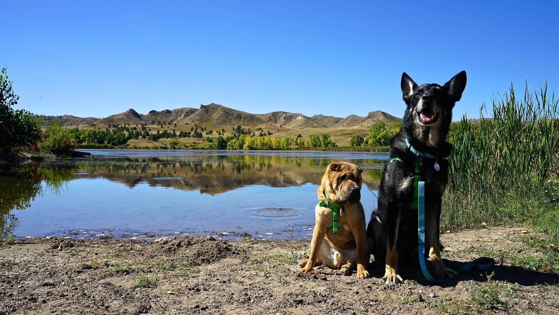 Nebraska's Top Pet Friendly Attraction: Fort Robinson State Park | GoPetFriendly.com