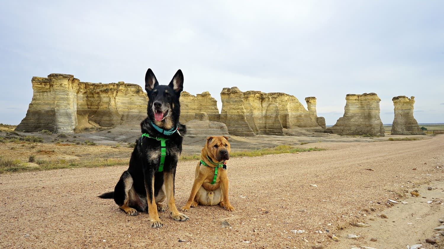 Kansas' Top Pet Friendly Attraction: Monument Rocks