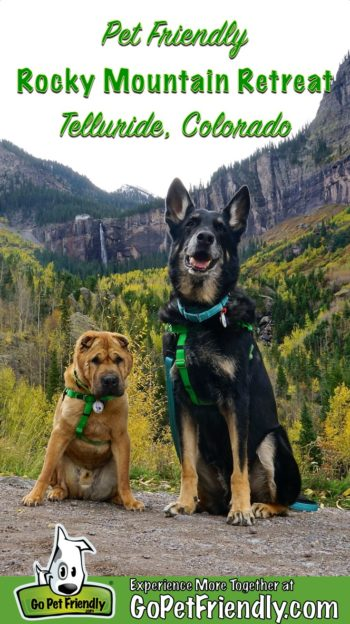 Two dogs on a pet friendly trail in Telluride, CO with Bridal Veil Falls in the background