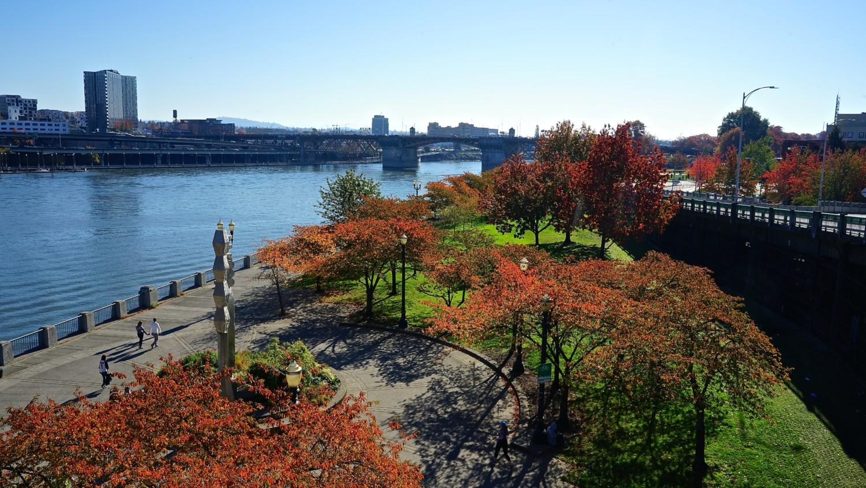 Oregon's Top Pet Friendly Attraction: Portland's Parks   GoPetFriendly.com