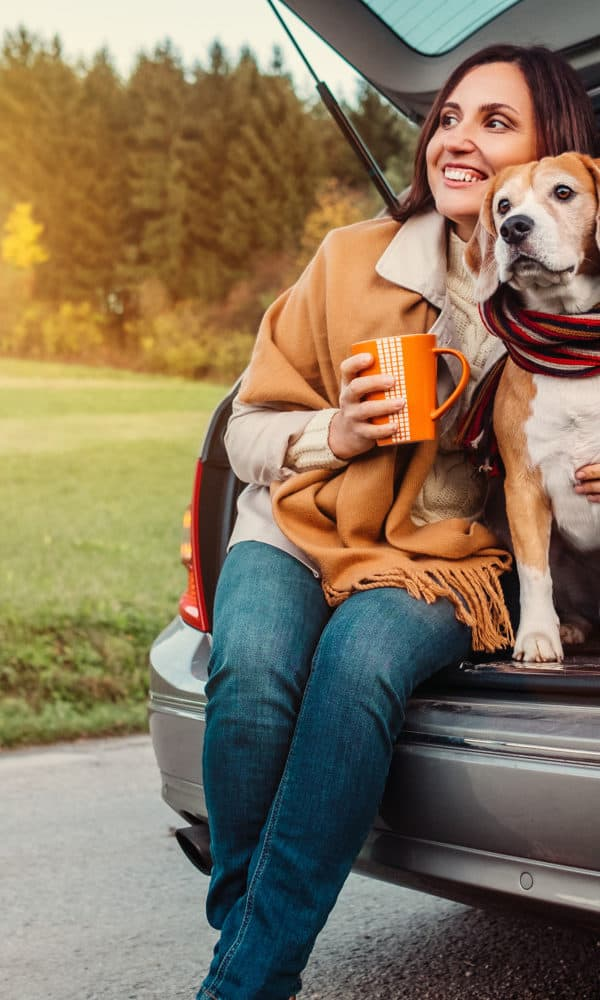 Travel Like A Pro – Golden Rules Of Pet Travel