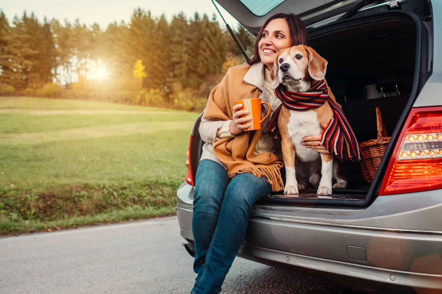 Tips For Traveling Alone With A Pet | GoPetFriendly.com