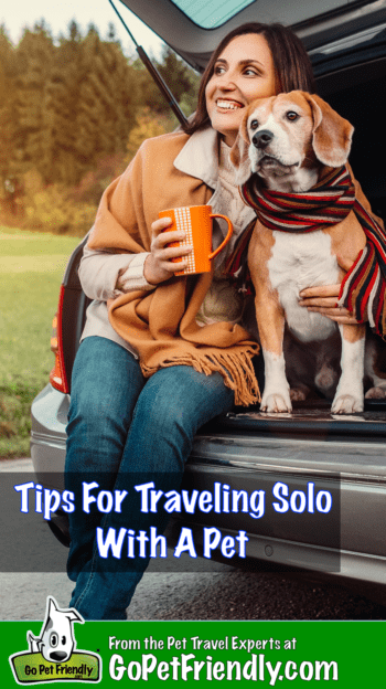 Tips for Traveling Alone with Pets | GoPetFriendly.com